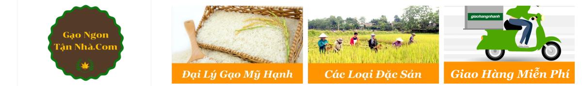 Gạo Ngon Giao Tận Nhà – Đại Lý Gạo Mỹ Hạnh