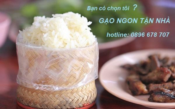 Chuyên cung cấp gạo nếp giá sỉ cho công ty xí nghiệp xuất hoá đơn VAT 0% tại HCM