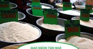 Tư vấn mở đại lí gạo tại HCM và khu vực lân cận