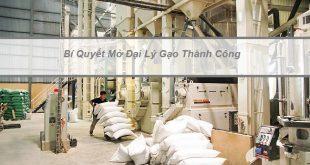 Mở đại lí gạo tại HCM