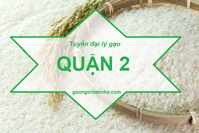 Tuyển đại lý gạo ngon quận 2 cung cấp gạo cho gia đình giá rẻ tại tphcm