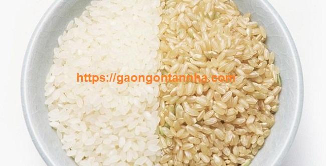 Chuyên cung cấp gạo cho công ty xí nghiệp tại quận 1 giá rẻ chiết khấu 0% tphcm