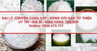 Chuyên cung cấp và đóng gói gạo từ thiện uy tín, chất lượng TpHCM