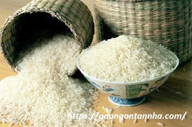Gạo đặc sản quà biếu tết ý nghĩa 2019