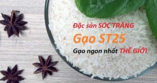 Gạo ST25 là gì ? Gạo ngon nhất thế giới - Gạo ngon tận nhà